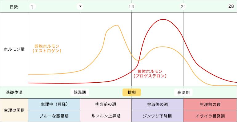 ホルモンの分泌量の変化と生理周期(4つのリズム)